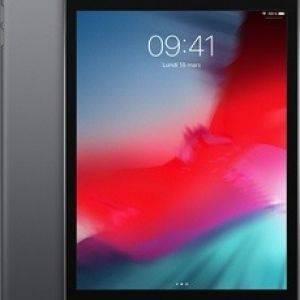 iPad Mini 2019 Wi-Fi + 4G 64Go Gris Sidéral