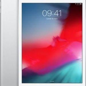 iPad Mini 2019 Wi-Fi + 4G 256Go - Argent