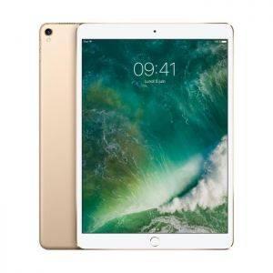 iPad Pro 12.9' 256 Go 4G Or